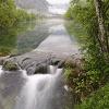 Naturfotografie (Gemeinde Wildalpen)